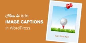 WordPress添加图像题目&ALT替换文本教程