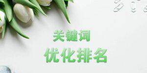 【湖南网站优化】高速玩转关键词优化缩略图